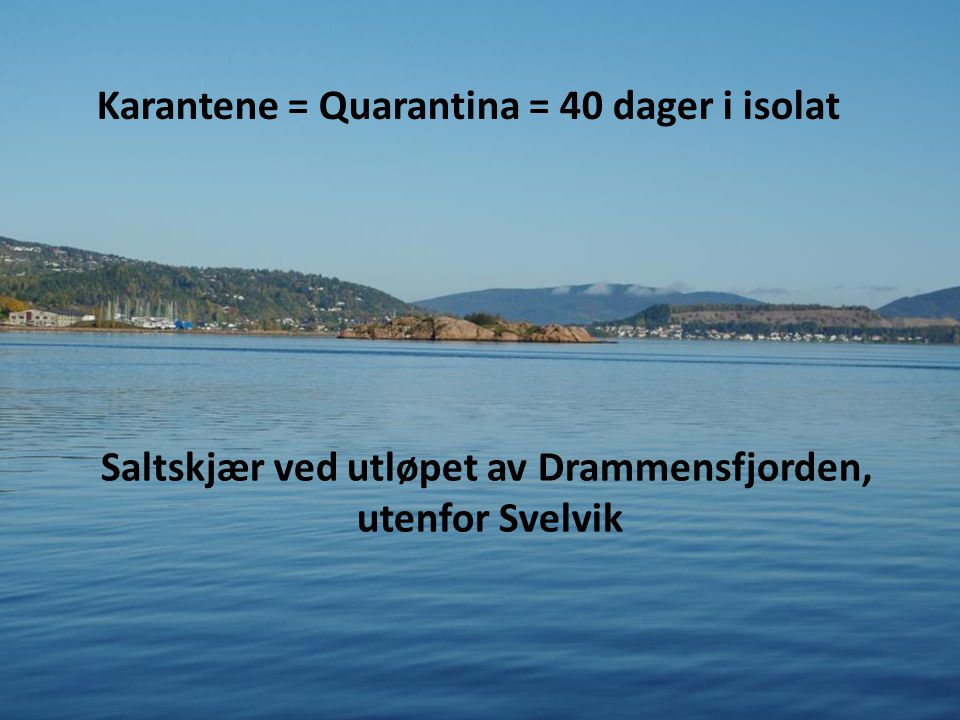 Saltskjær ved utløpet av Drammensfjorden,