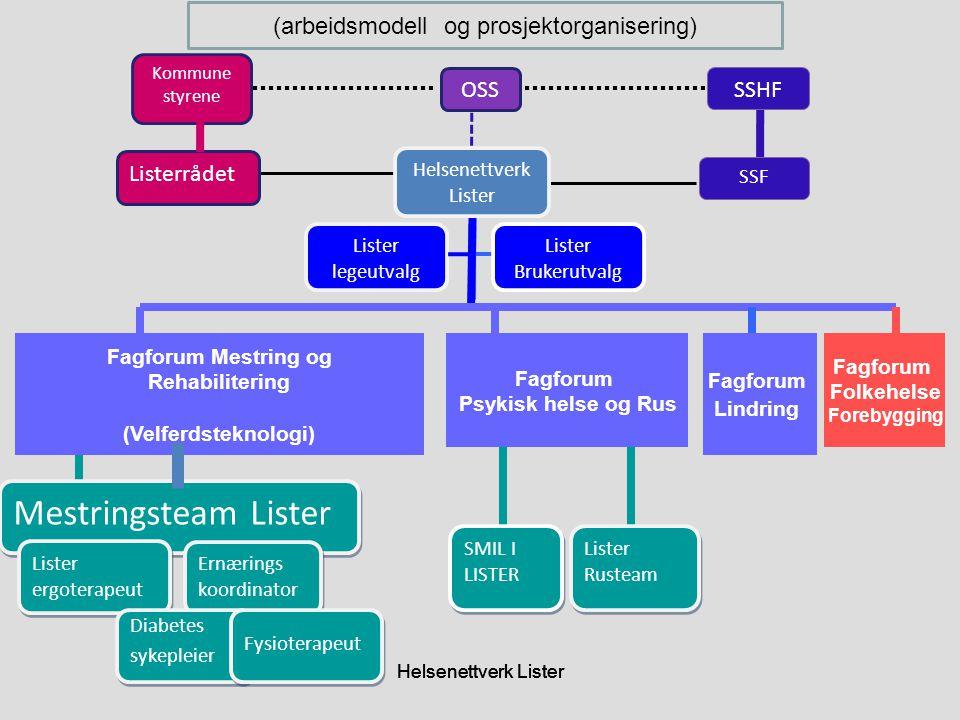 (arbeidsmodell og prosjektorganisering)
