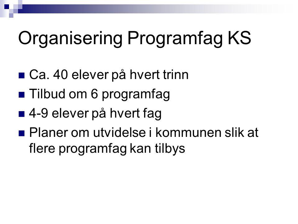 Organisering Programfag KS