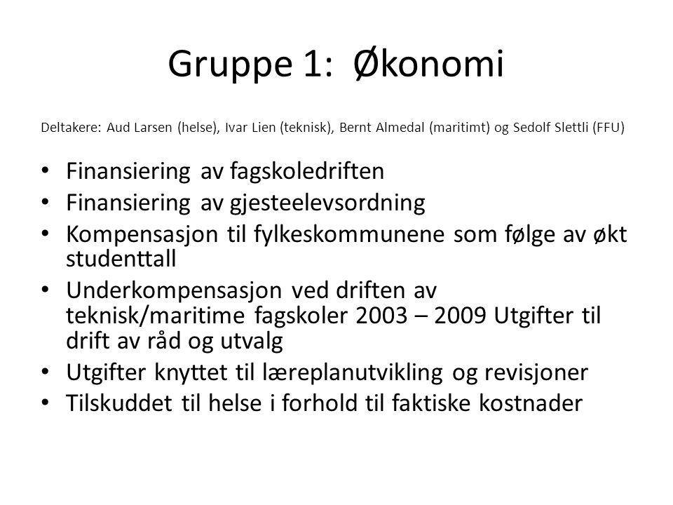 Gruppe 1: Økonomi Finansiering av fagskoledriften