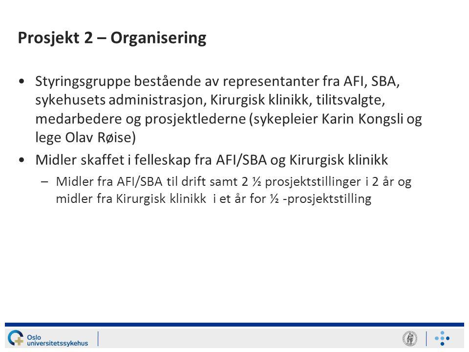 Prosjekt 2 – Organisering