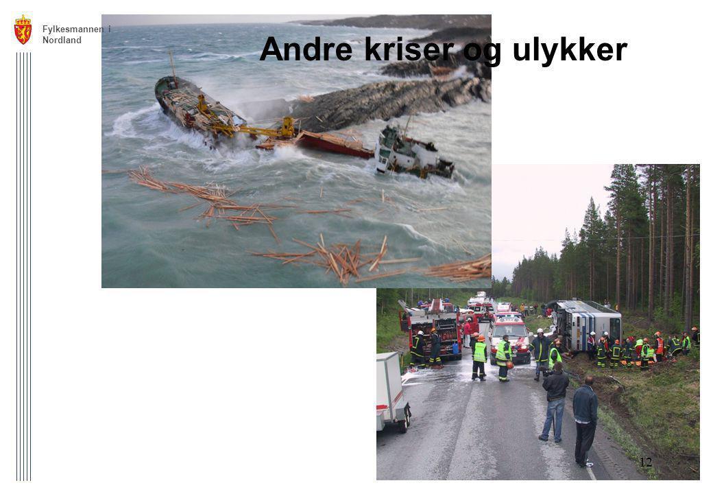Andre kriser og ulykker