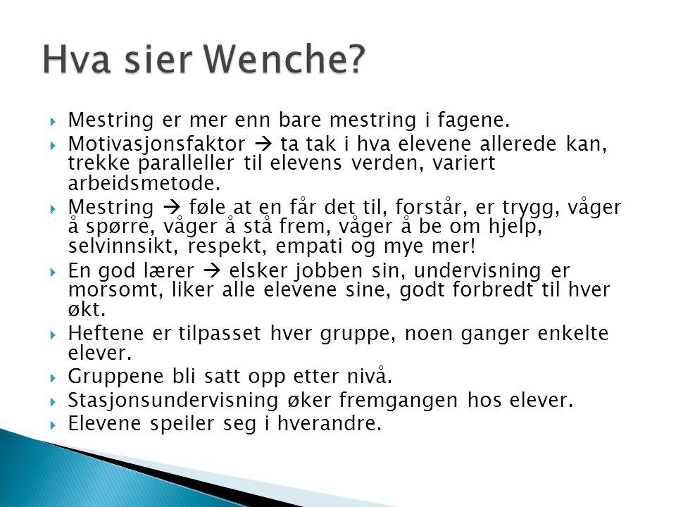 Hva sier Wenche Mestring er mer enn bare mestring i fagene.