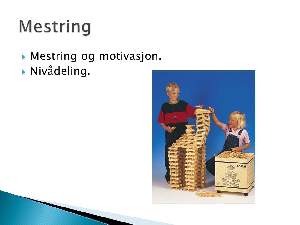 Mestring Mestring og motivasjon. Nivådeling.