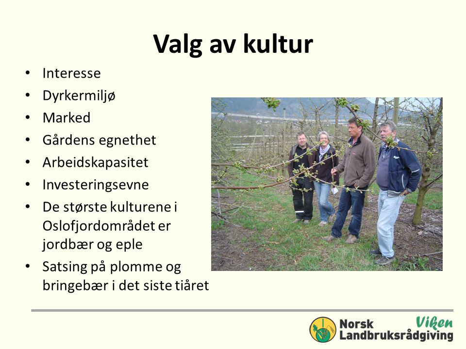 Valg av kultur Interesse Dyrkermiljø Marked Gårdens egnethet
