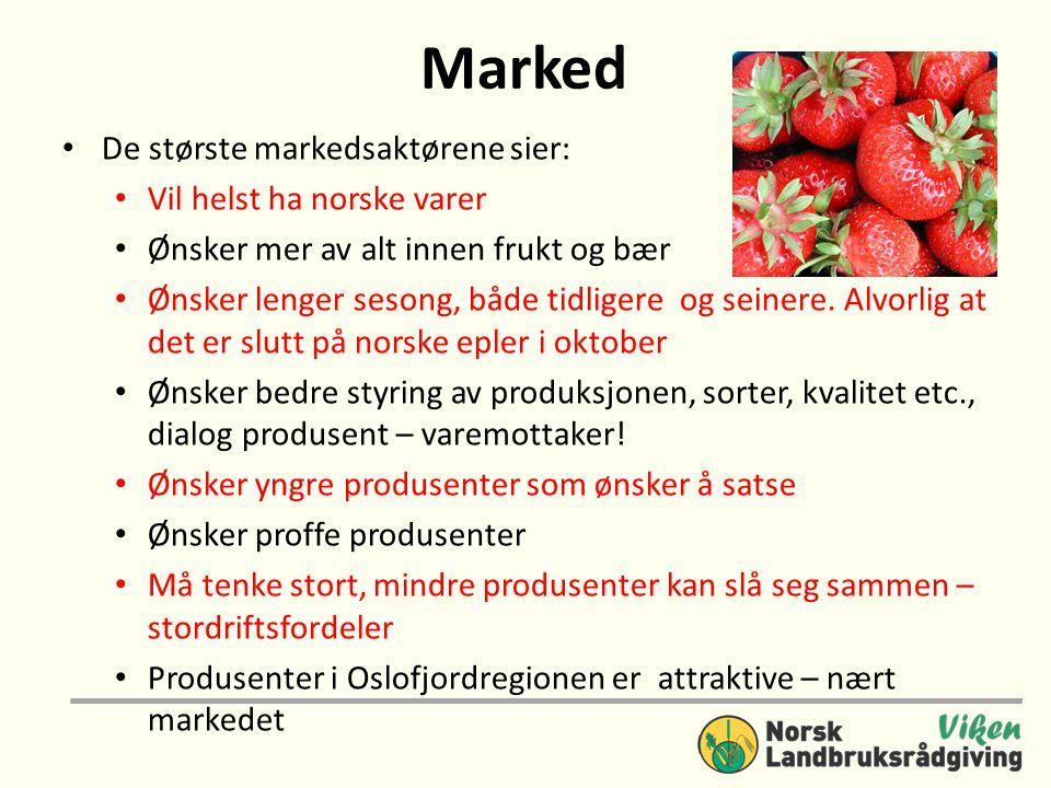 Marked De største markedsaktørene sier: Vil helst ha norske varer