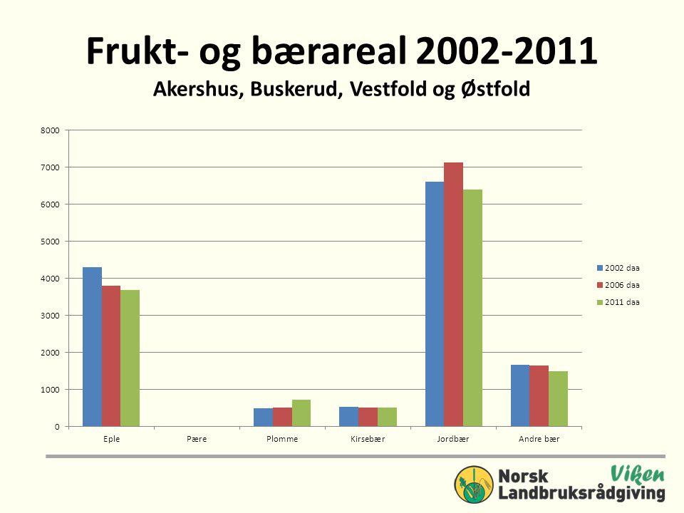 Frukt- og bærareal 2002-2011 Akershus, Buskerud, Vestfold og Østfold