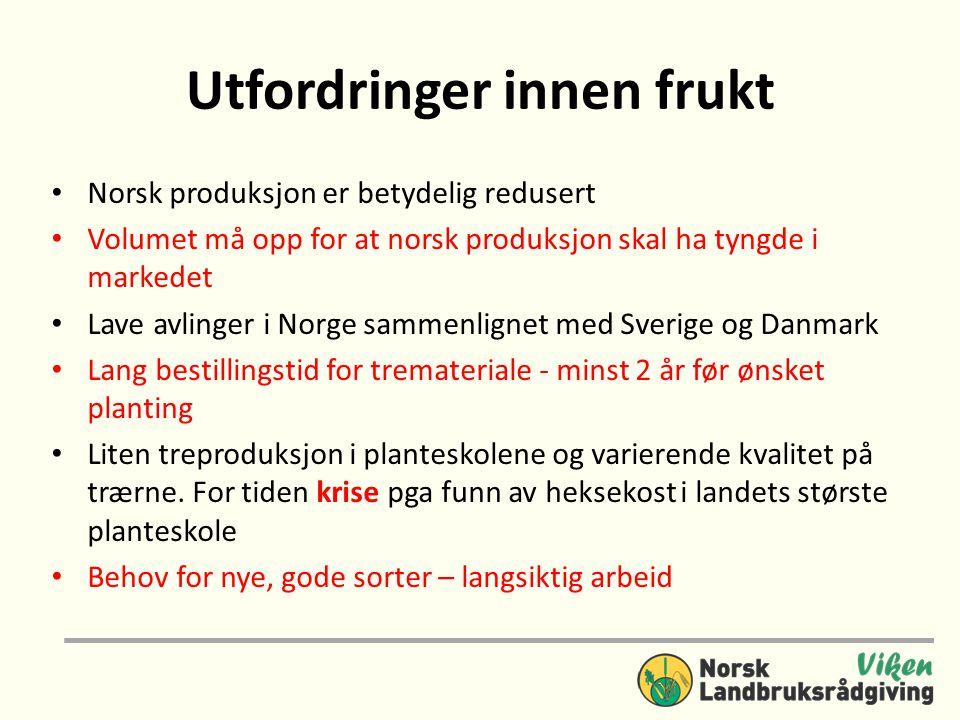 Utfordringer innen frukt