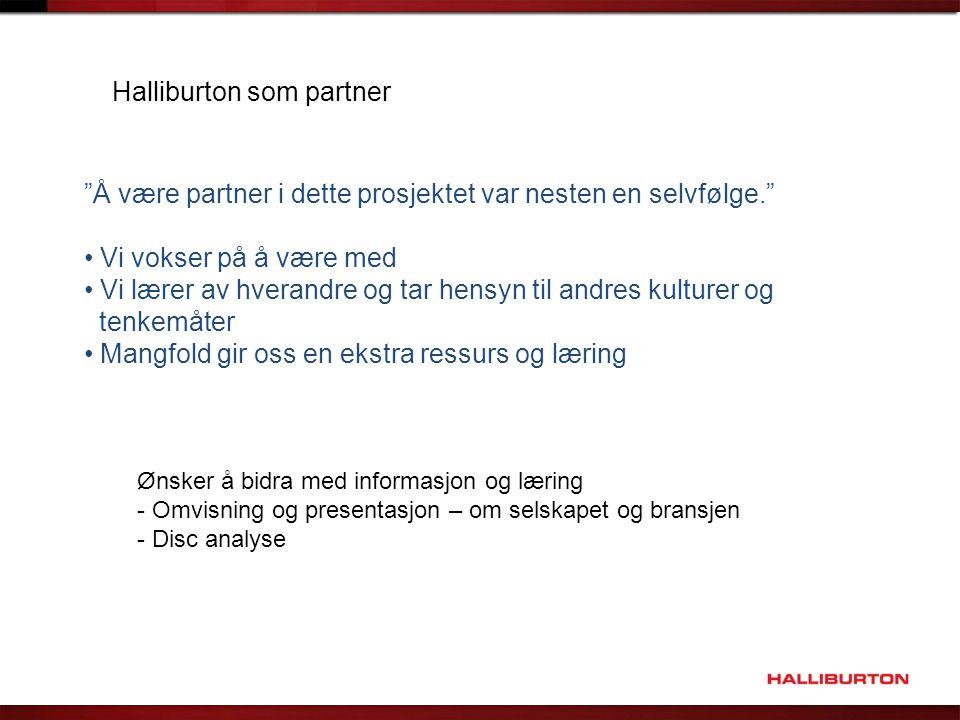 Halliburton som partner