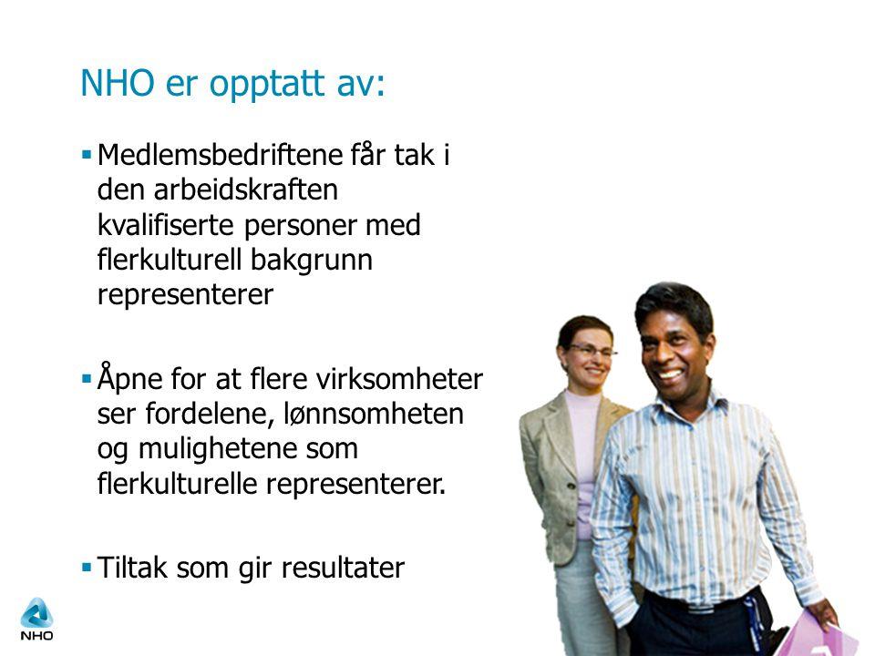 NHO er opptatt av: Medlemsbedriftene får tak i den arbeidskraften kvalifiserte personer med flerkulturell bakgrunn representerer.