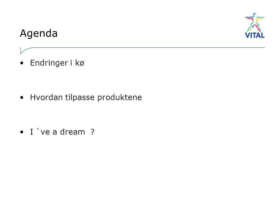 Agenda Endringer i kø Hvordan tilpasse produktene I `ve a dream