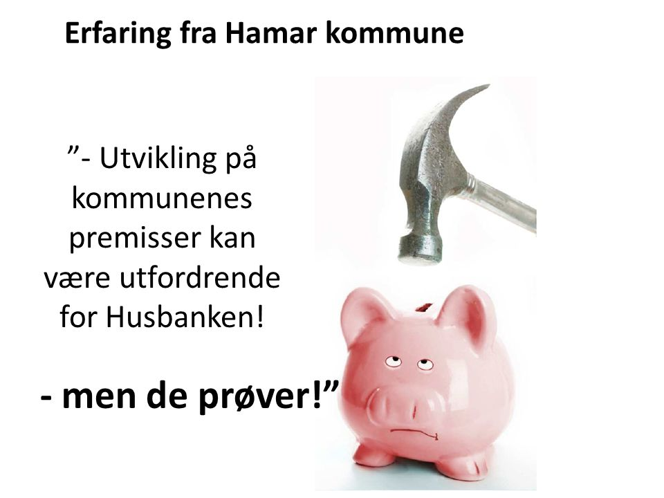 - men de prøver! Erfaring fra Hamar kommune