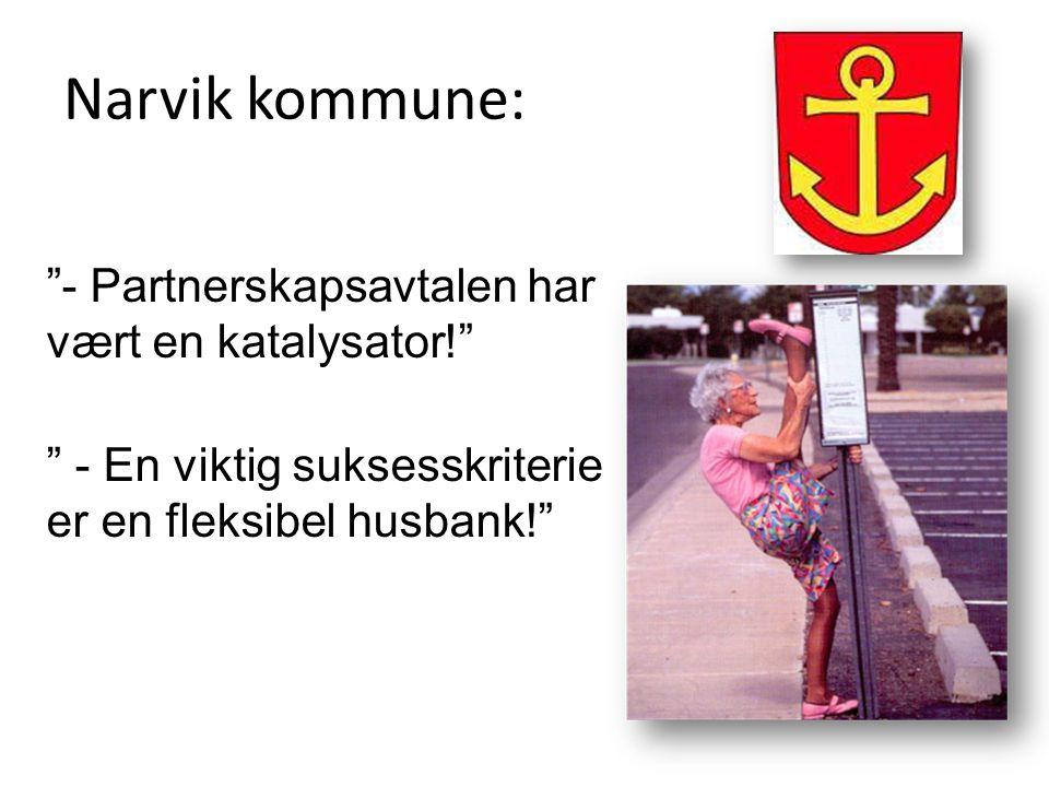 Narvik kommune: - Partnerskapsavtalen har vært en katalysator!