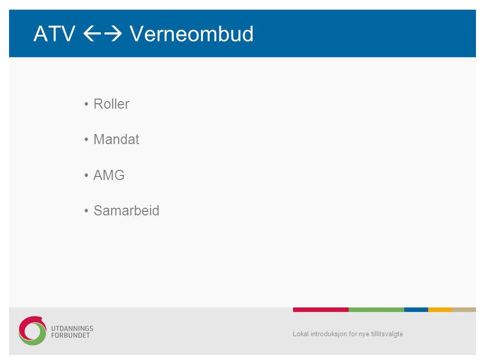 ATV  Verneombud Roller Mandat AMG Samarbeid
