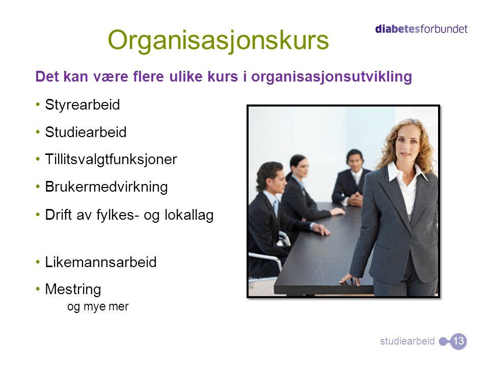 Organisasjonskurs Det kan være flere ulike kurs i organisasjonsutvikling. Styrearbeid. Studiearbeid.