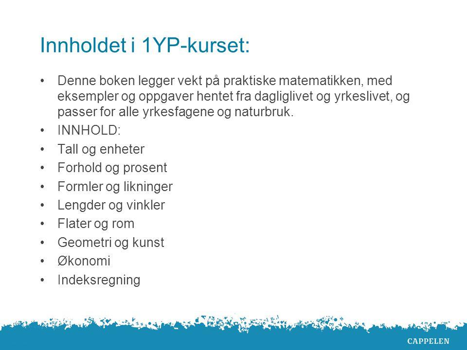 Innholdet i 1YP-kurset: