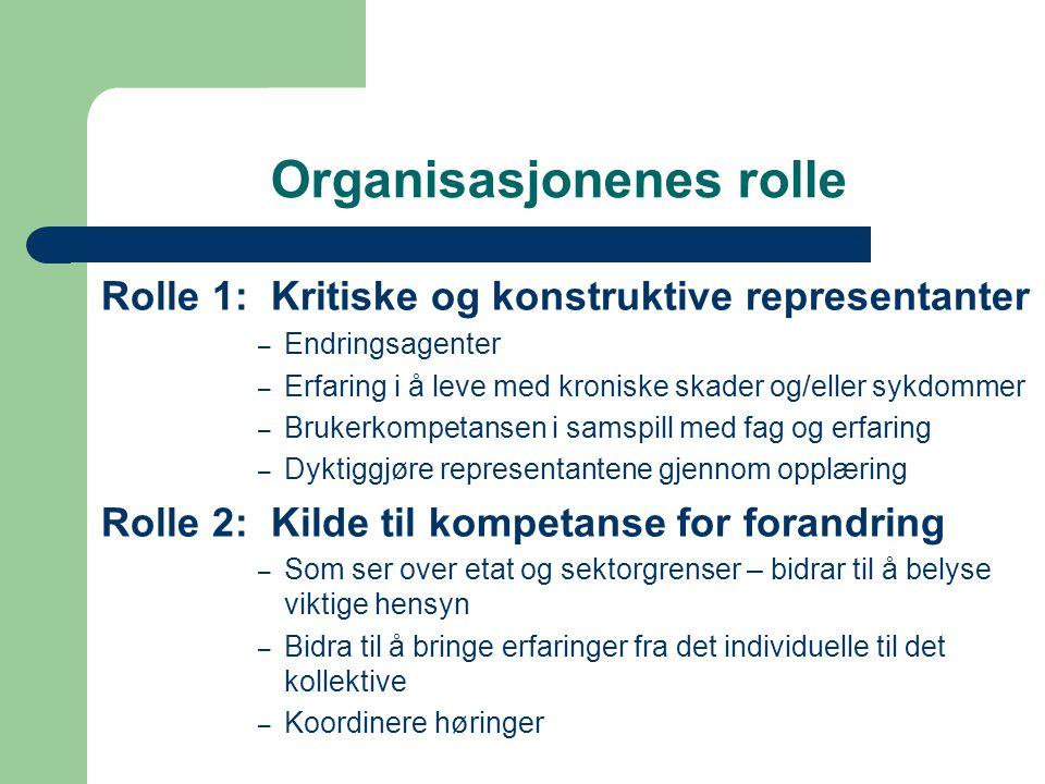 Organisasjonenes rolle
