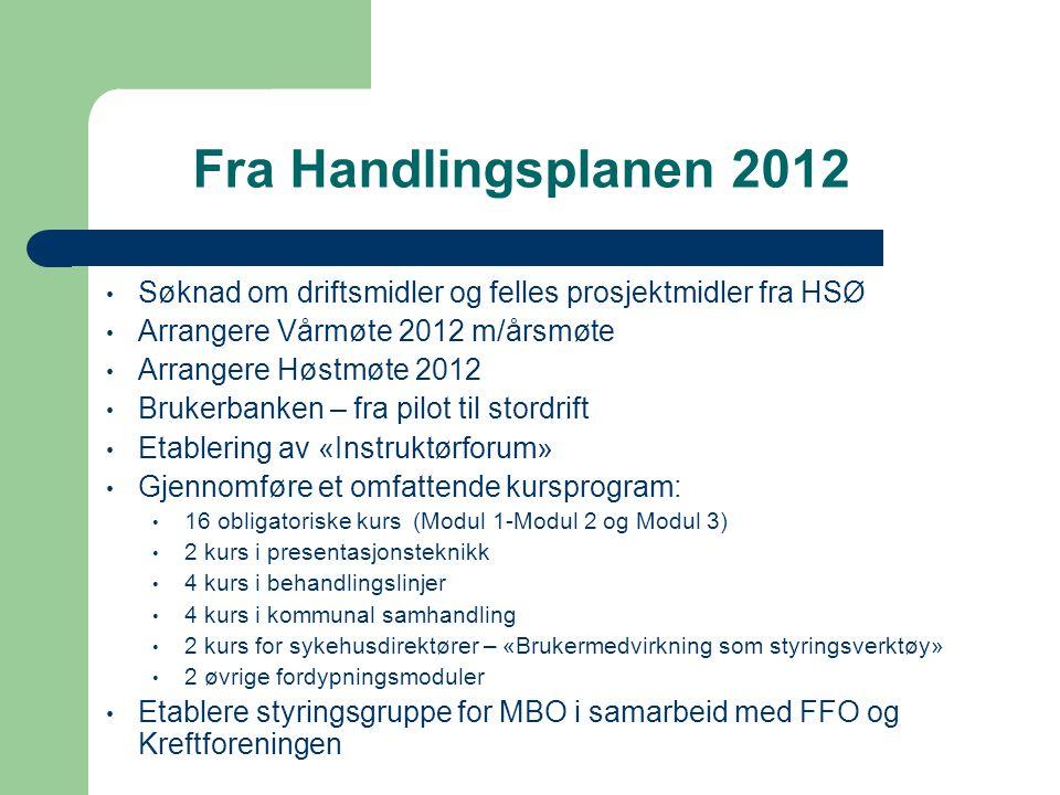 Fra Handlingsplanen 2012 Søknad om driftsmidler og felles prosjektmidler fra HSØ. Arrangere Vårmøte 2012 m/årsmøte.