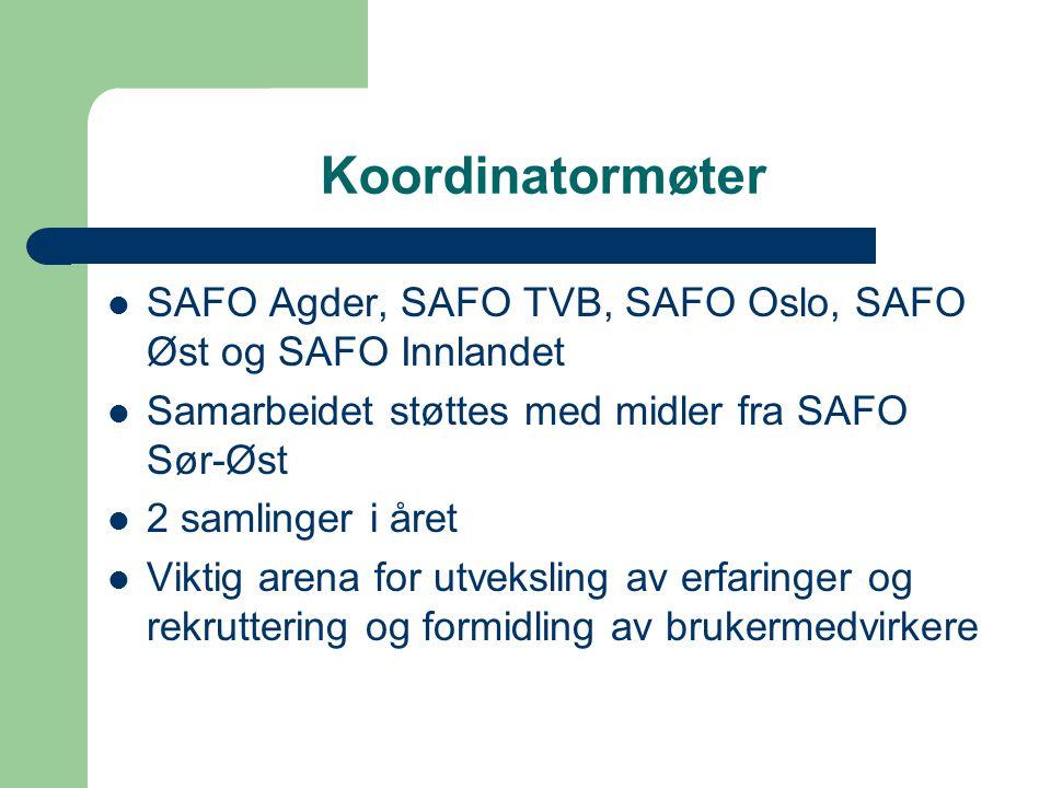Koordinatormøter SAFO Agder, SAFO TVB, SAFO Oslo, SAFO Øst og SAFO Innlandet. Samarbeidet støttes med midler fra SAFO Sør-Øst.