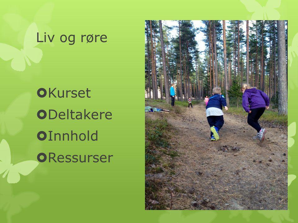 Liv og røre Kurset Deltakere Innhold Ressurser Lillan: