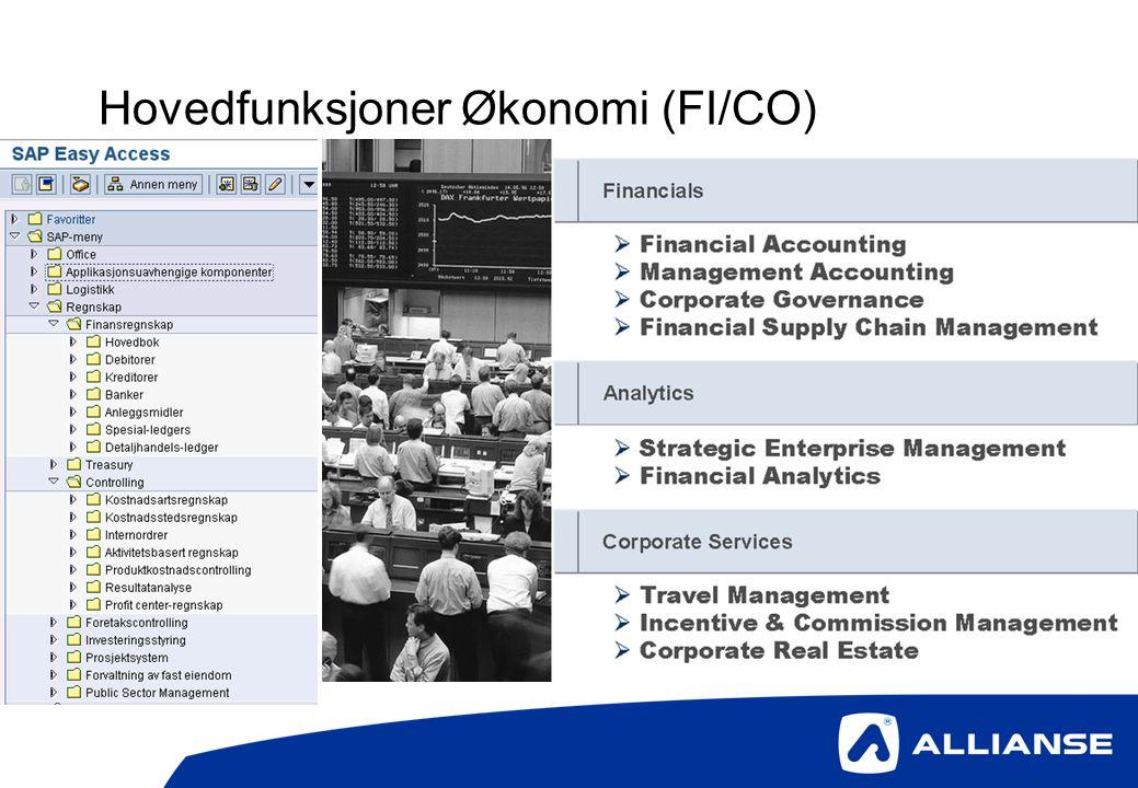 Hovedfunksjoner Økonomi (FI/CO)