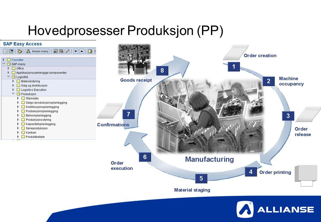 Hovedprosesser Produksjon (PP)