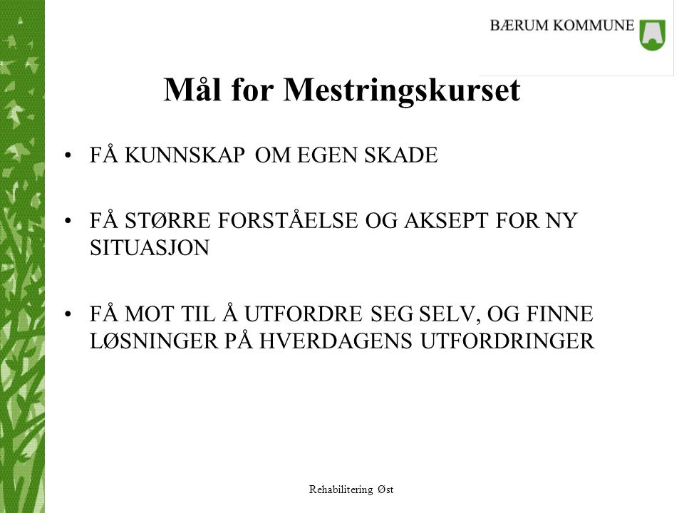 Mål for Mestringskurset