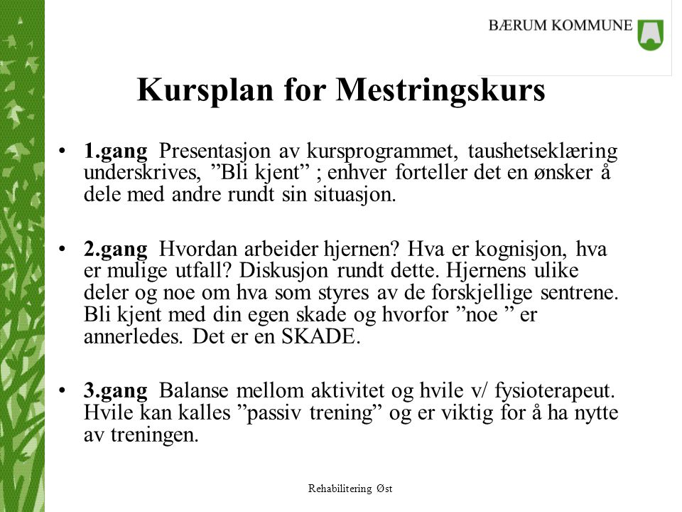 Kursplan for Mestringskurs