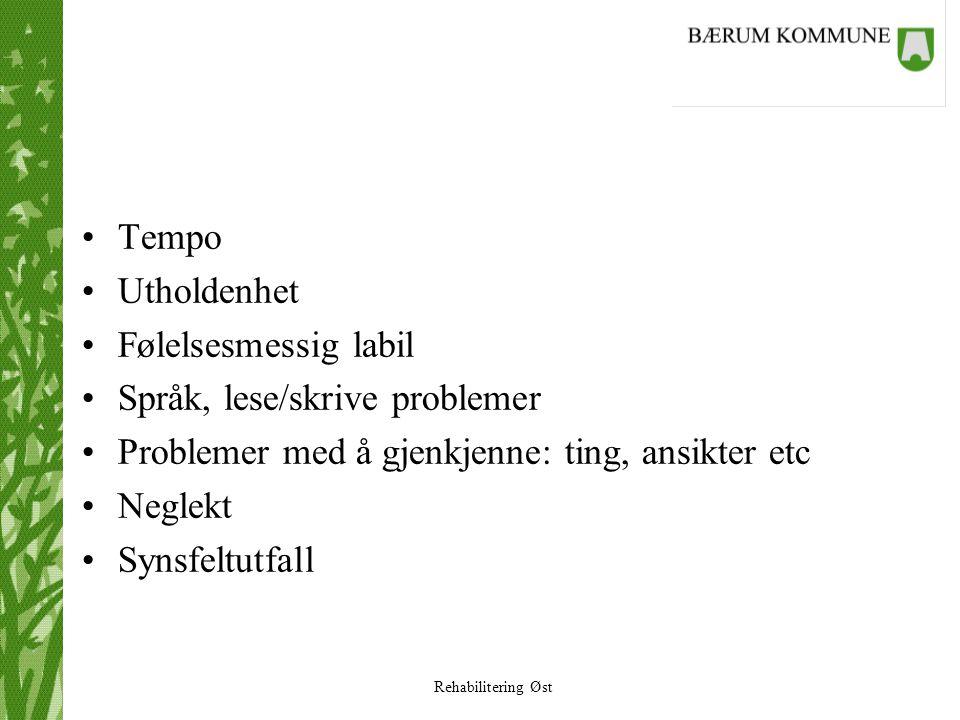 Tempo Utholdenhet. Følelsesmessig labil. Språk, lese/skrive problemer. Problemer med å gjenkjenne: ting, ansikter etc.