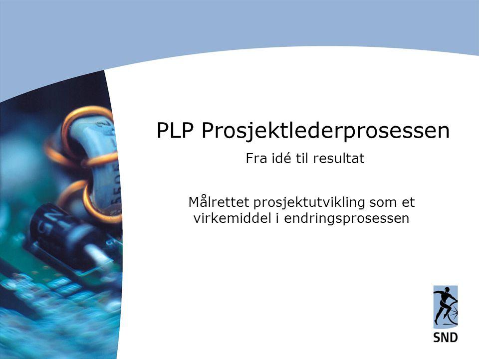 PLP Prosjektlederprosessen