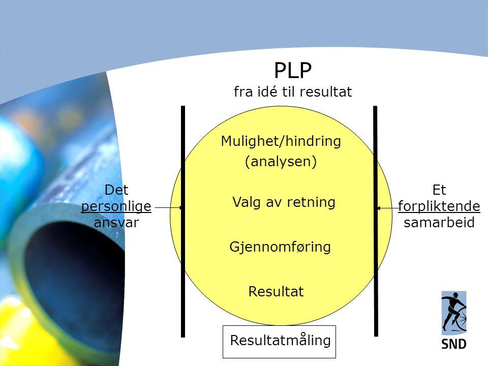PLP fra idé til resultat