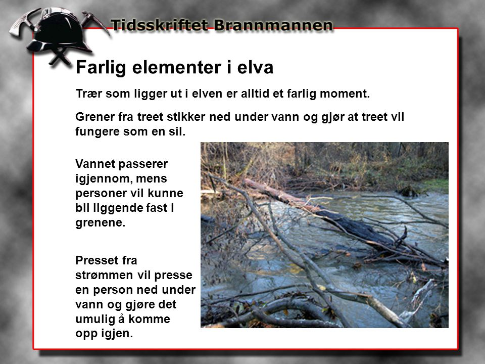 Farlig elementer i elva