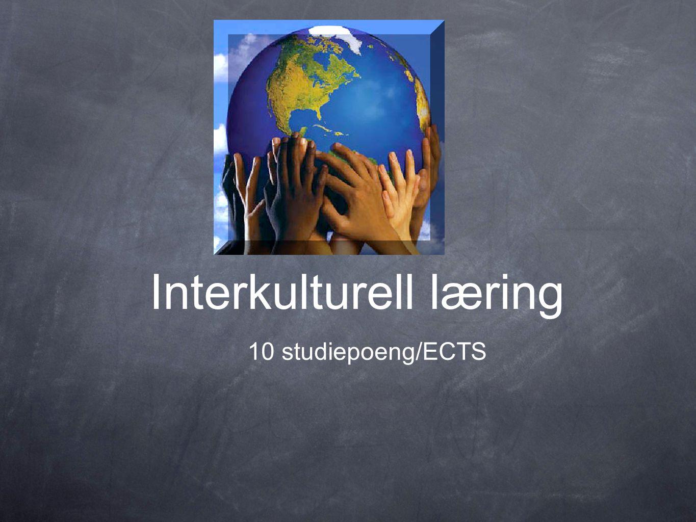 Interkulturell læring