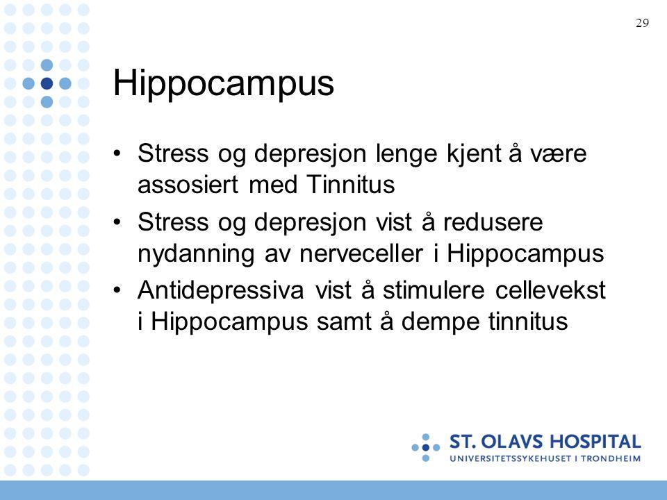Hippocampus Stress og depresjon lenge kjent å være assosiert med Tinnitus.