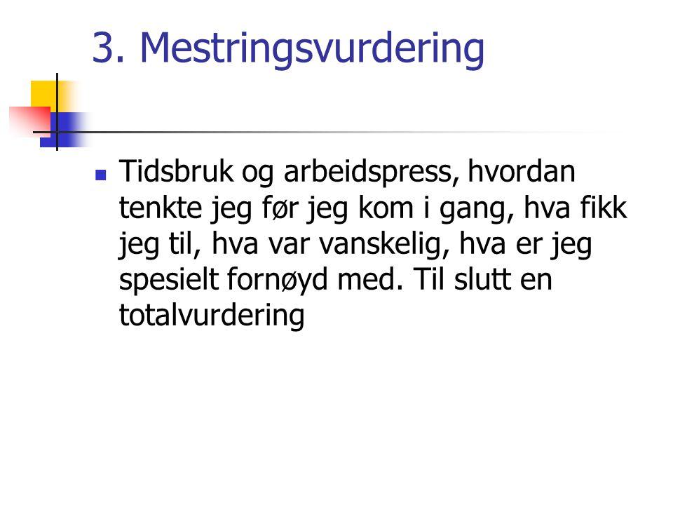 3. Mestringsvurdering