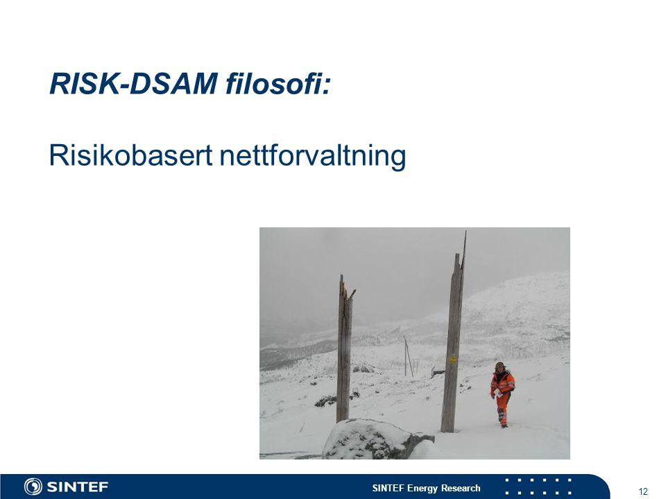RISK-DSAM filosofi: Risikobasert nettforvaltning