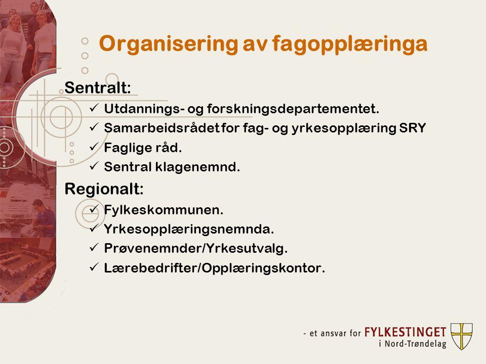 Organisering av fagopplæringa