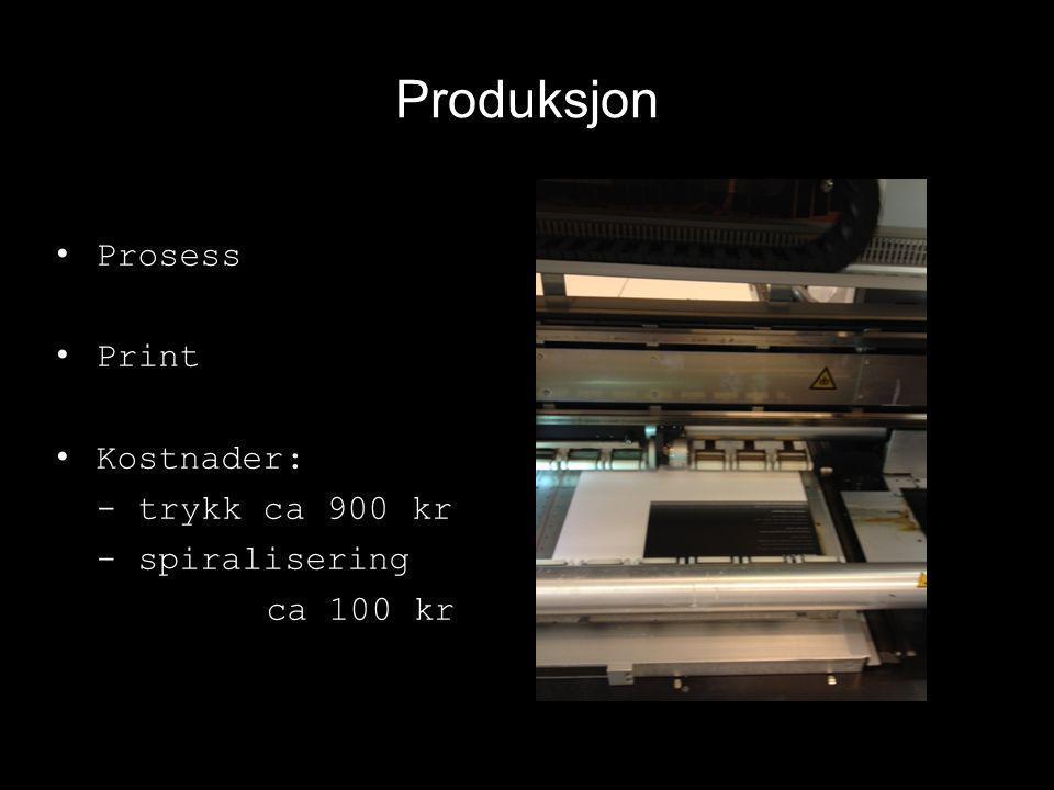 Produksjon Prosess Print Kostnader: - trykk ca 900 kr - spiralisering