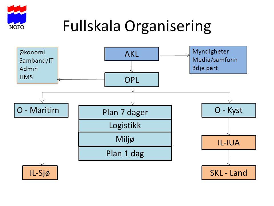 Fullskala Organisering