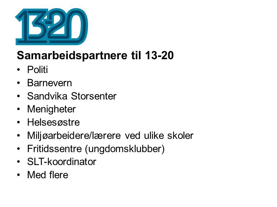 Samarbeidspartnere til 13-20