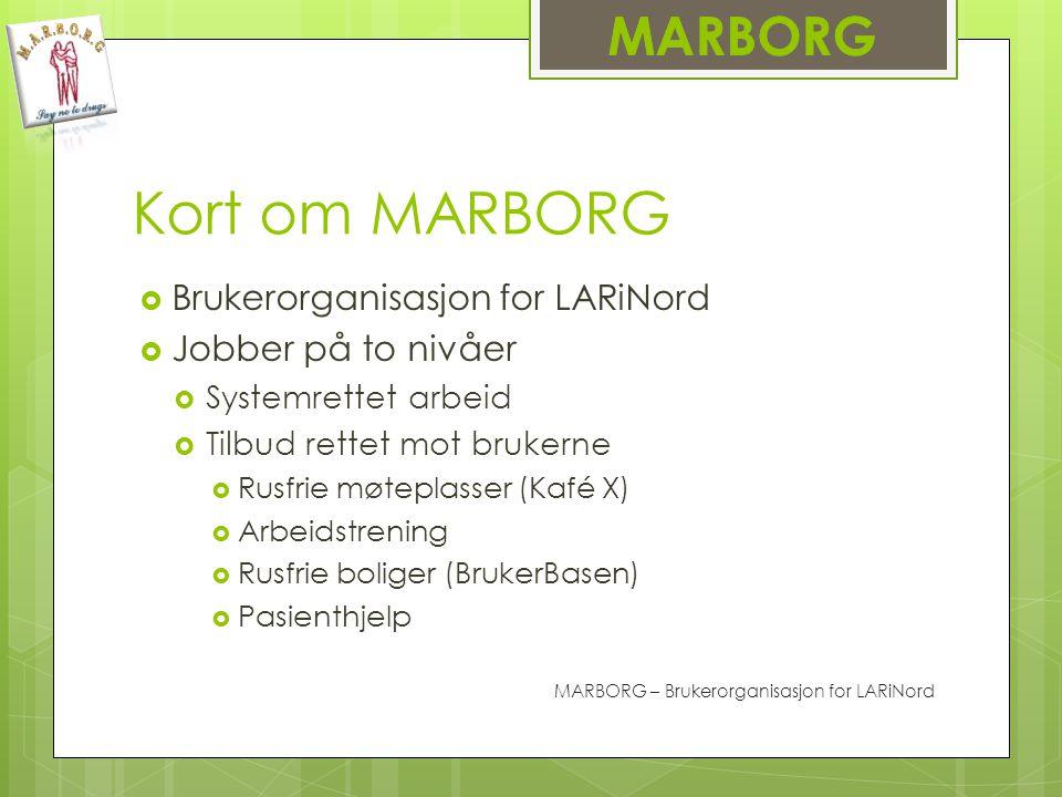 Kort om MARBORG MARBORG Brukerorganisasjon for LARiNord