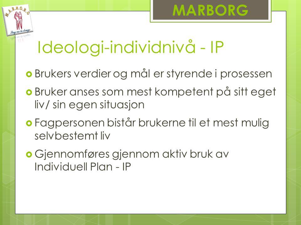 Ideologi-individnivå - IP