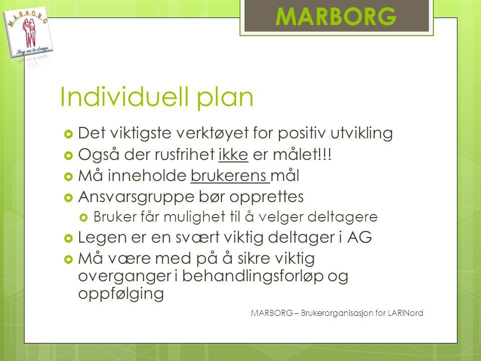 Individuell plan MARBORG Det viktigste verktøyet for positiv utvikling