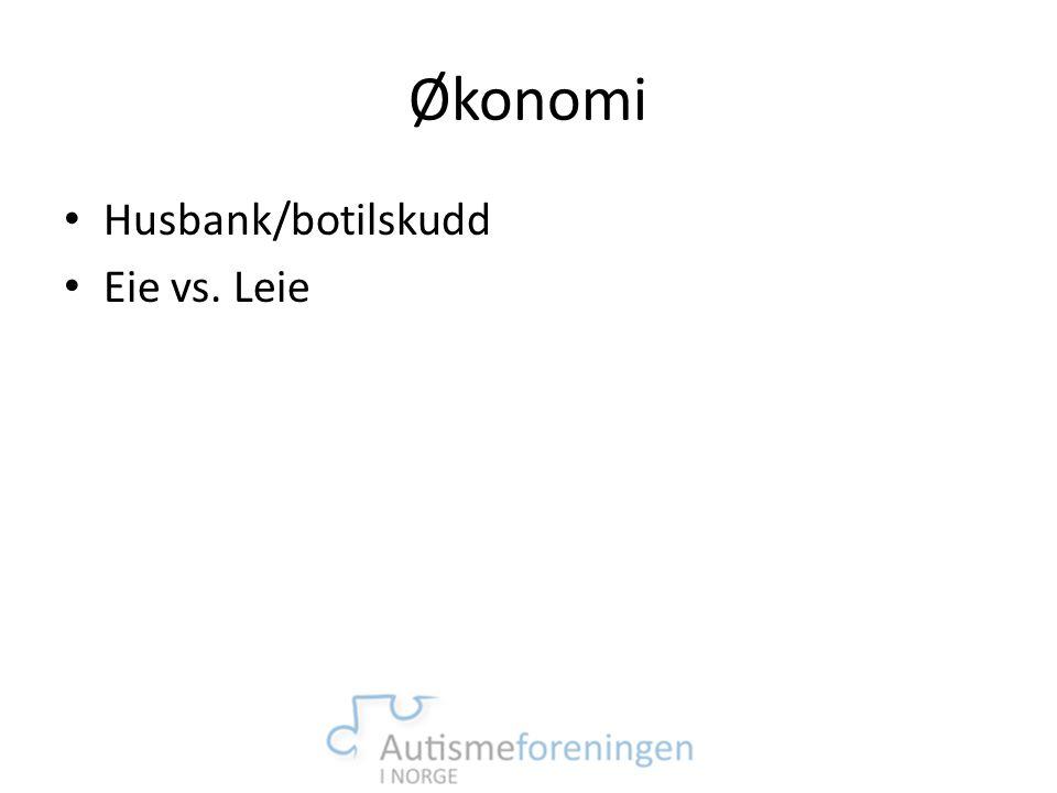 Økonomi Husbank/botilskudd Eie vs. Leie