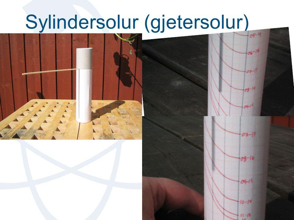 Sylindersolur (gjetersolur)