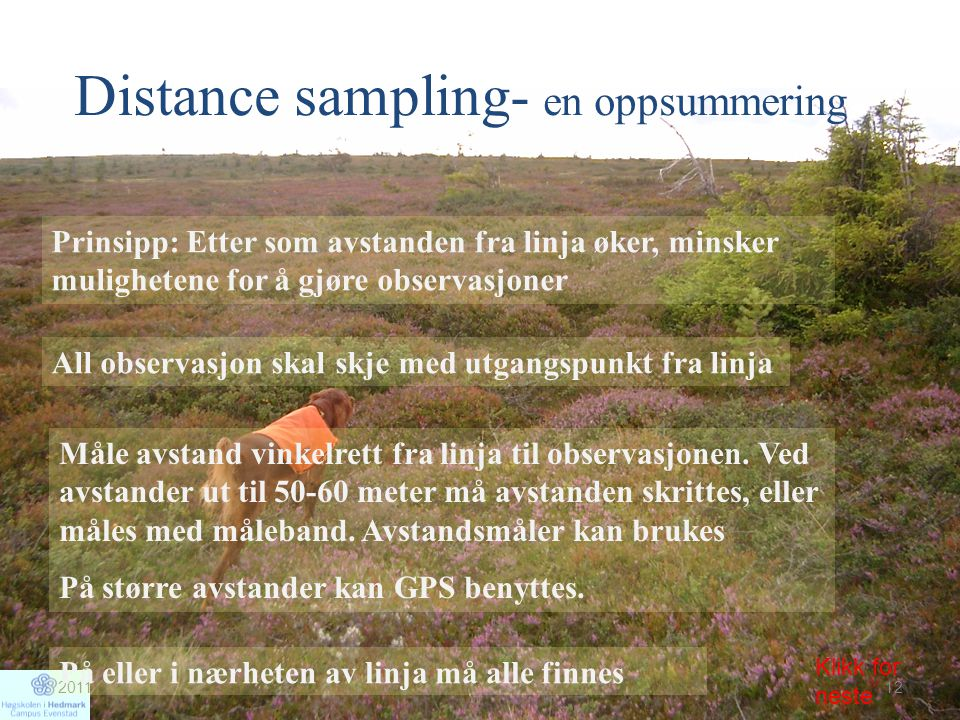 Distance sampling- en oppsummering