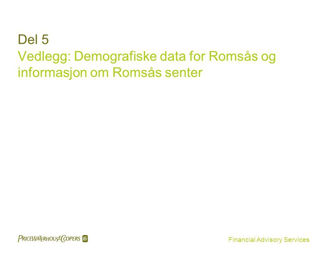 Vedlegg: Demografiske data for Romsås og informasjon om Romsås senter