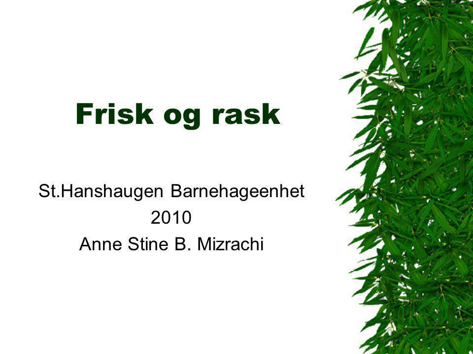 St.Hanshaugen Barnehageenhet 2010 Anne Stine B. Mizrachi
