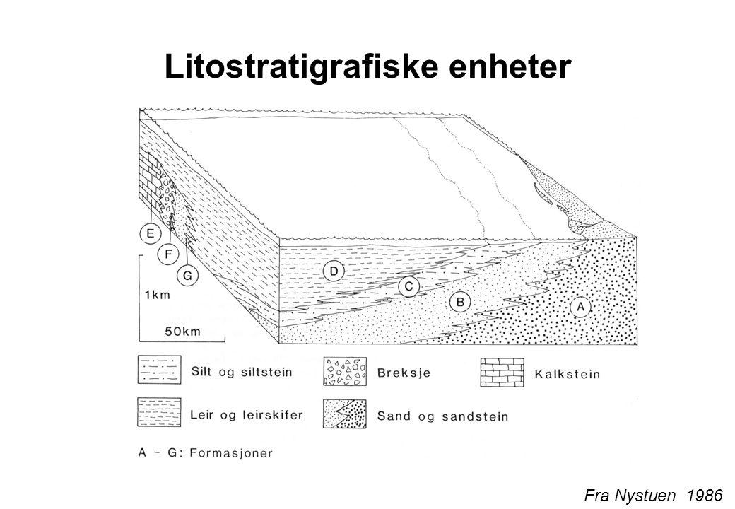 Litostratigrafiske enheter