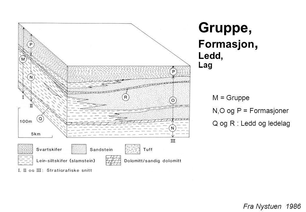Gruppe, Formasjon, Ledd, Lag